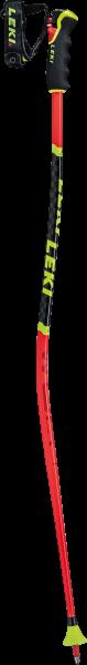 WCR Lite GS 3D 65065901